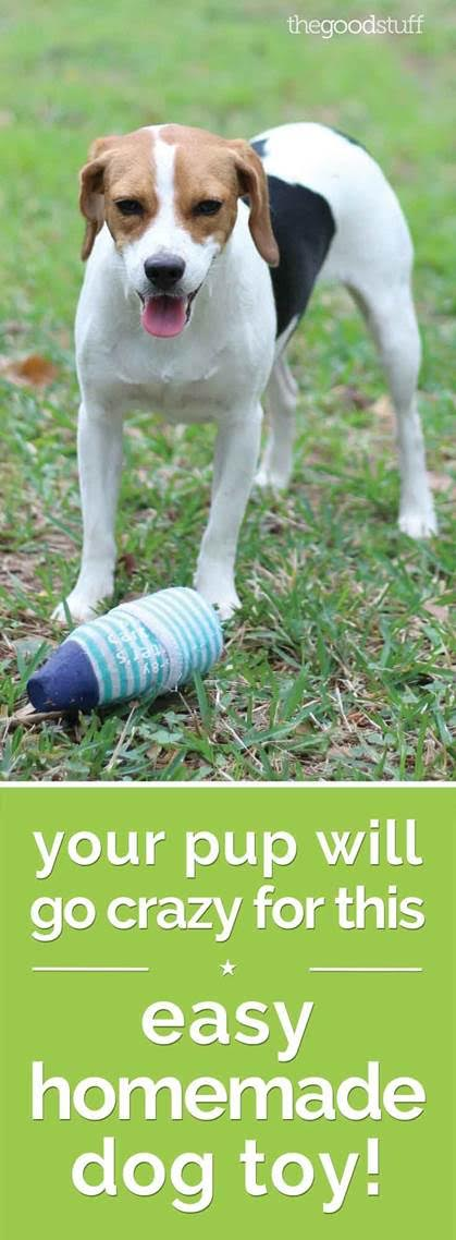 Your Pup Will Go Crazy for This Homemade Dog Toy!